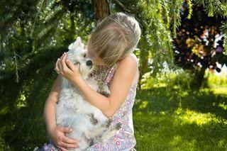 ワンコに触ると体が痒い!目が痒い!犬アレルギーの検査方法・改善方法