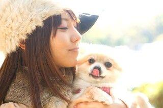 犬や猫、ペットを飼う前に確認しておきたい、あなたはペットを飼う資格はある?チェックリスト10項目