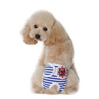 愛犬にぴったりなおむつが見つかるおむつカバーの種類3選!