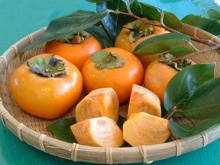 今が旬の柿!ワンちゃんは食べていいの??