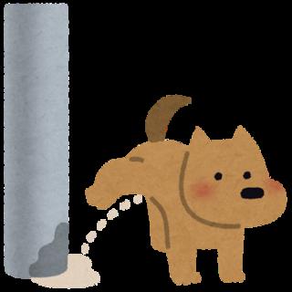 ペットの種類問わず一緒に泊まれる「民宿 水分民宿村」併設の「水分茶屋」。大分の郷土料理を犬も一緒に食べれます。