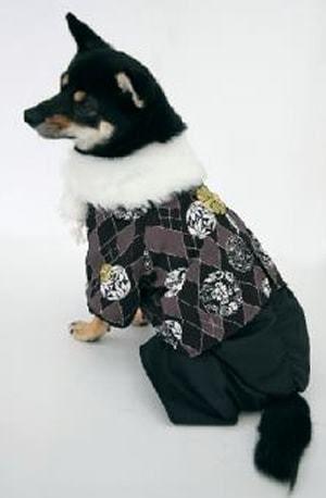 年賀状の写真に!初詣に!ペットも着物を着てお正月を楽しみましょう♪