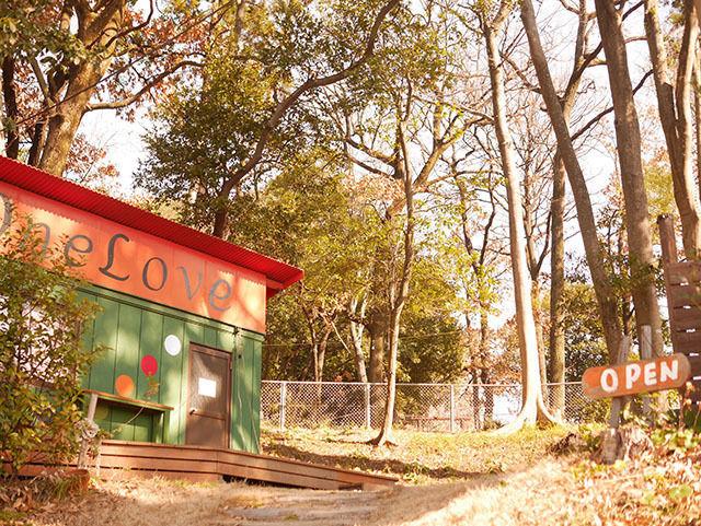 【大分県大分市】ドッグラン・ドッグカフェが併設されている「ワンLOVE」さんにいってきました!