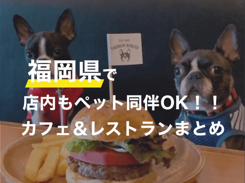 福岡県でペット同伴で店内に入れるオススメのカフェやレストラン18選(うちドッグラン併設のドッグカフェ&犬カフェ2選)