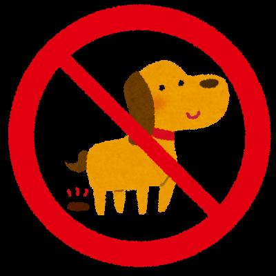 犬がお留守番中・外出中にトイレシーツをやぶる、ウンチを踏み散らかす…!やめさせるトイレトレーニングは?