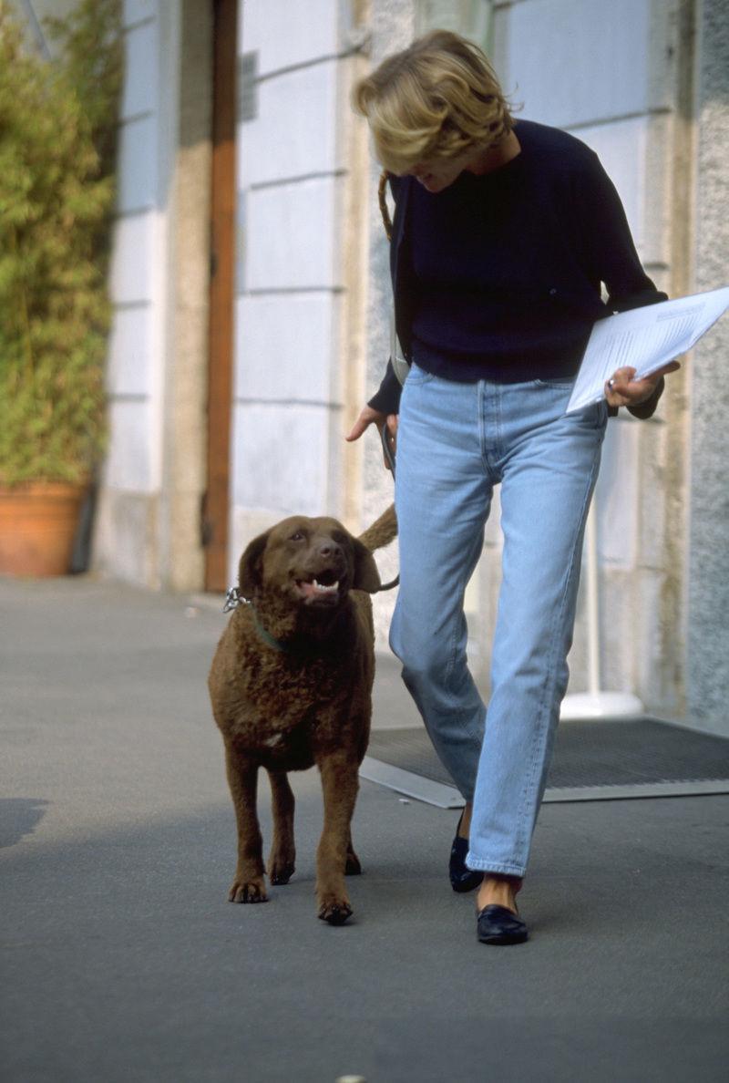 初めての子犬を迎え入れる準備はできてる?環境について4つの基本的なこと
